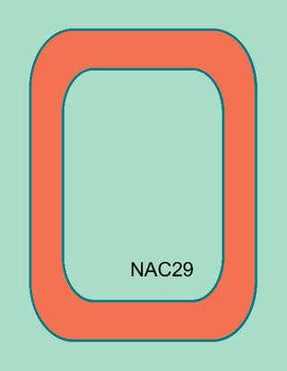 Nac29