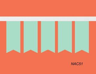 Nac51